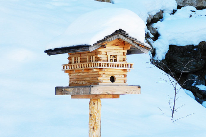 Bird houses offer shelter and warmth to birds during the winter.